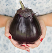 Burpee's new 'Meatball' eggplant seed available for the 2016 home gardening season