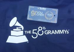 Sundial Powder Coatings at the Grammys