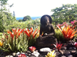 Sue Wong Hawaii - Buddha Circle Garden designed by Sue Wong Photo by Sue Wong