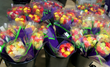 Another Valentine's Day Made Sweeter by CrowleyFresh - More than 36,000 Floral Arrangements to be Handled in Warehouse