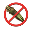 ArborSystems Boxer Insecticide for two-year control of Emerald Ash Borer