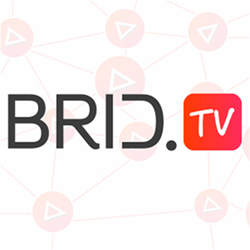 Brid.tv an enterprise-level free online video platform and player solution.