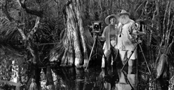 Photographer Clyde Butcher Presents Newest Exhibit At Big Cypress Gallery Open House