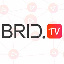 Brid.tv an enterprise-level free online video platform and player solution