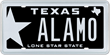 Texas license plate message ALAMO, to be sold at auction by MyPlates.com!