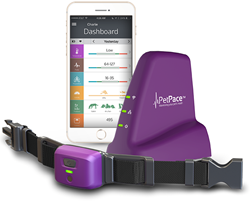 The smart collar continuously monitors pet health, vital signs and activity levels.