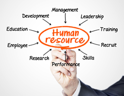 A chart depicting the different areas of Human Resources