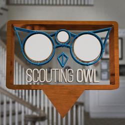 Scouting Owl logo 3D