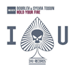 "DoubleV & Sylvia Tosun, ""Hold Your Fire"" - artwork"