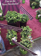 Fall Creek Farm & Nursery Launches BrazelBerries Collection of Ornamental Berry Plants at the IPM Trade Fair in Germany