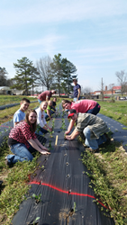 National FFA Organization Helps Members Ease Hunger in Local...