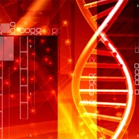 Gene Study May Lead to New Mesothelioma Treatments
