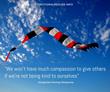 Dzogchen Ponlop Rinpoche compassion kindness quote