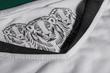 three lions detailing