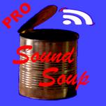 SoundSoup-Pro App for acoustic modelling