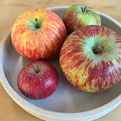 Apple Growers Celebrate 2016 National Johnny Appleseed Day with...