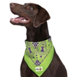 Insect Shield Paisley Bandanas