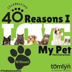 Submit a photo of you and your pet explaining why you love your fur-baby, with the hashtag #TomlynLovesPets