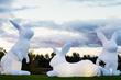 Australian Artist Amanda Parer Launches North American Tour of Intrude Public Art Installation of 5 Monumental, Illuminated Rabbits