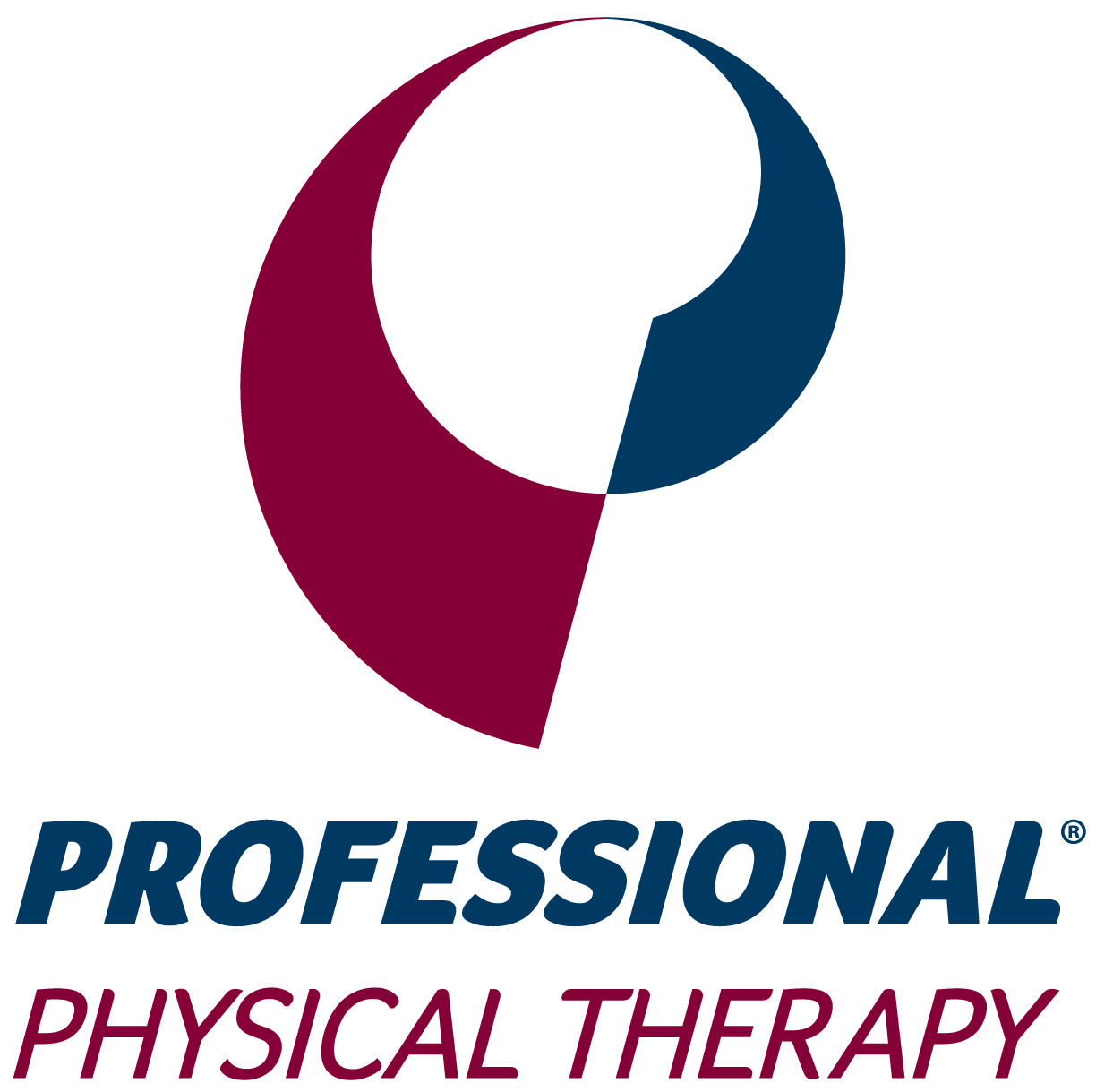 professional physical therapy acquires sports training physical therapy ForProfessional Physical Therapy Garden City