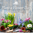 Brookhaven Retreat Participated in National Plant a Flower Day as an Act of Mindfulness on March 12