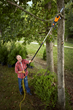 WORX 8 Amp, 10 Inch Electric Pole Saw Excels at Spring Pruning and Trimming