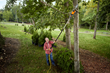 WORX 8A, 10 in. Electric Pole Saw is ideal for spring pruning and trimming.