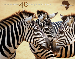 Celebrating 40 Years of Excellence