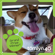 Tomlyn® Veterinary Science Donates Pet Wellness Supplies to Local Animal Shelters