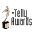 Make Mentoring Count Video Course Receives Telly Award