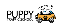 Puppy Traffic School