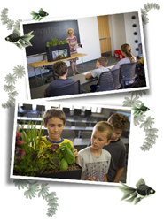 Growing food and growing minds with the AqauSprouts Classroom give away