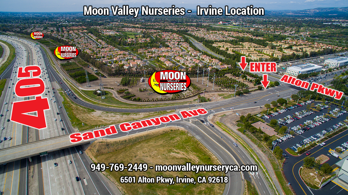 Moon Valley Nurseries Grand Opening