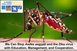 Entomologists Call for Education, Management Programs, and Cooperation to Stop Zika, Dengue, and Chikungunya