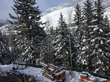 Buyers continue to comb the Vail Valley for available properties, including working with companies like Precision Construction West to build custom homes to their specifications.
