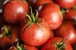 organic tomatoes, espoma organic, national gardening month