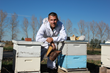 Nick French Bee Keeper