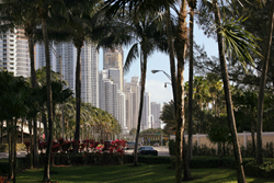 A street view in Sunny Isles Beach.