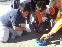 Sullivan Solar Power Helping West Orange Elementary School with a...