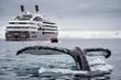 PONANT Opens Sales For Winter 2017-2018 Antarctic Cruises