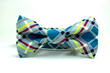 Turquoise Modern Plaid Dog Bow Tie from Four Black Paws.