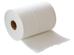 Paper Pal is a household invention offering a highly economical and power saving way of dispensing paper towels.