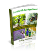 """""""Essential Oils Have Super Powers"""" is a New Book Released This Week by Author Kathy Heshelow. It Explores the Anti-Biotic Resistant """"Super Bugs"""" Among Other Subjects."""