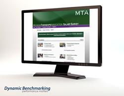 Renewed Benchmarking Platform for Michigan Townships