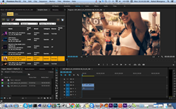 Adobe Premiere Pro Plugin in Evolphin Zoom VideoFX