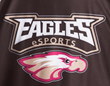 Robert Morris University Illinois eSports Team Makes It to the Final Four