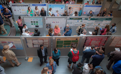During Research and Scholarship Day, Husson undergraduates, graduate students, and faculty members from all of the university's colleges and schools will share the results of their many capstone research projects, graduate theses and other activities.