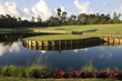 The golf greats have experienced the famous Hole 17 at TPC Sawgrass