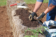 Create a planting bed for seeds by covering the straw bale with a one- to two-inch layer of planting mix.