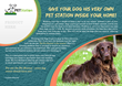 The Pet Station is a pet invention  which every household with pets will absolutely want to have on hand